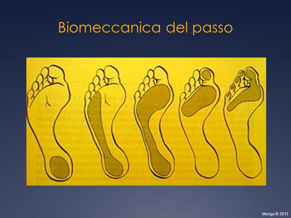 Biomeccanica del passo