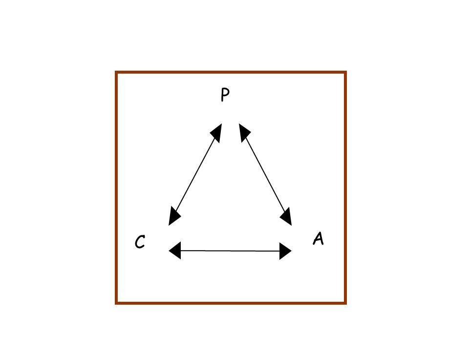 P C A