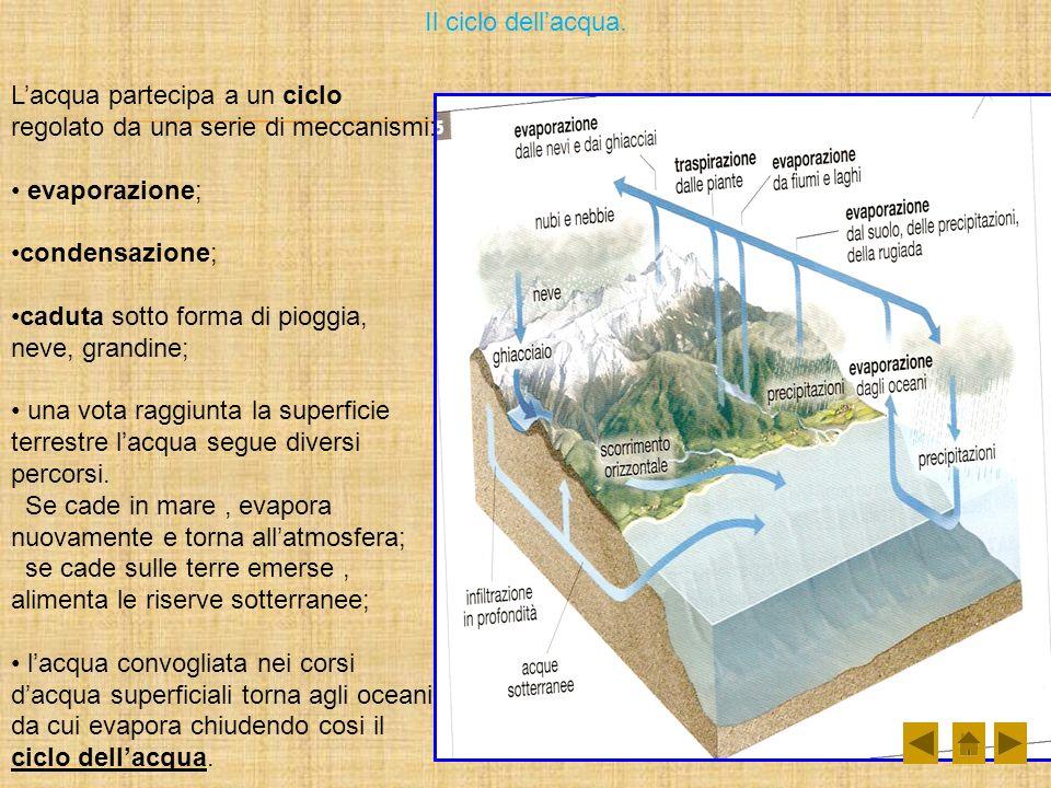 Il ciclo dell'acqua. L'acqua partecipa a un ciclo regolato da una serie di meccanismi: evaporazione;