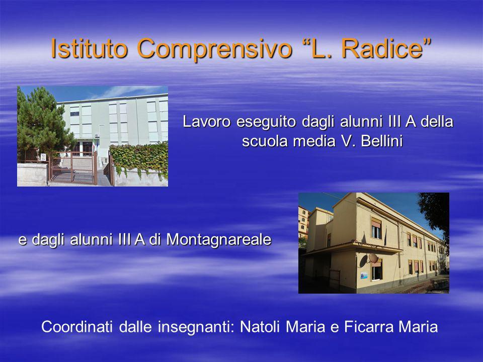 Istituto Comprensivo L. Radice