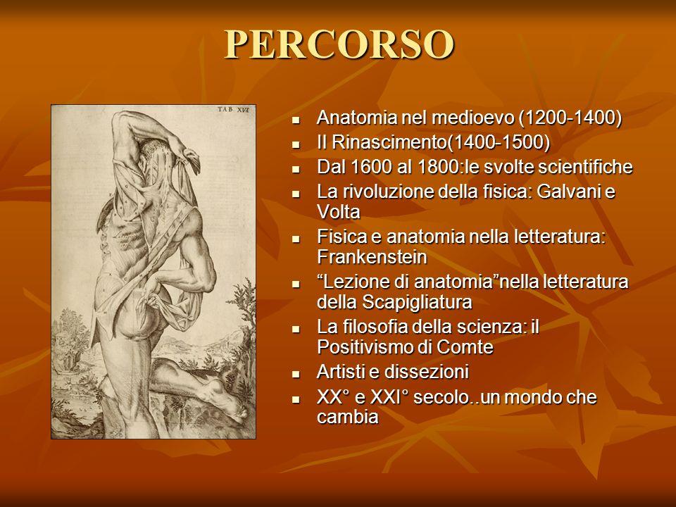 PERCORSO Anatomia nel medioevo (1200-1400) Il Rinascimento(1400-1500)