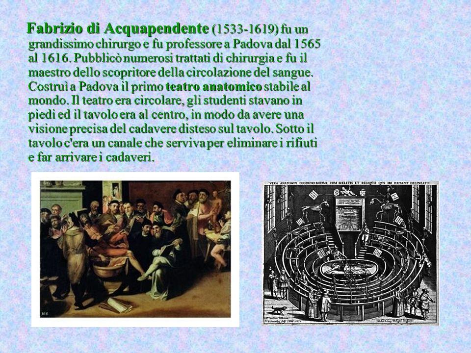 Fabrizio di Acquapendente (1533-1619) fu un grandissimo chirurgo e fu professore a Padova dal 1565 al 1616.