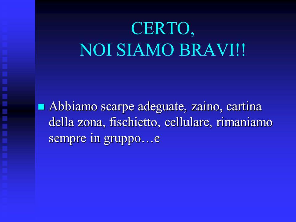 CERTO, NOI SIAMO BRAVI!.
