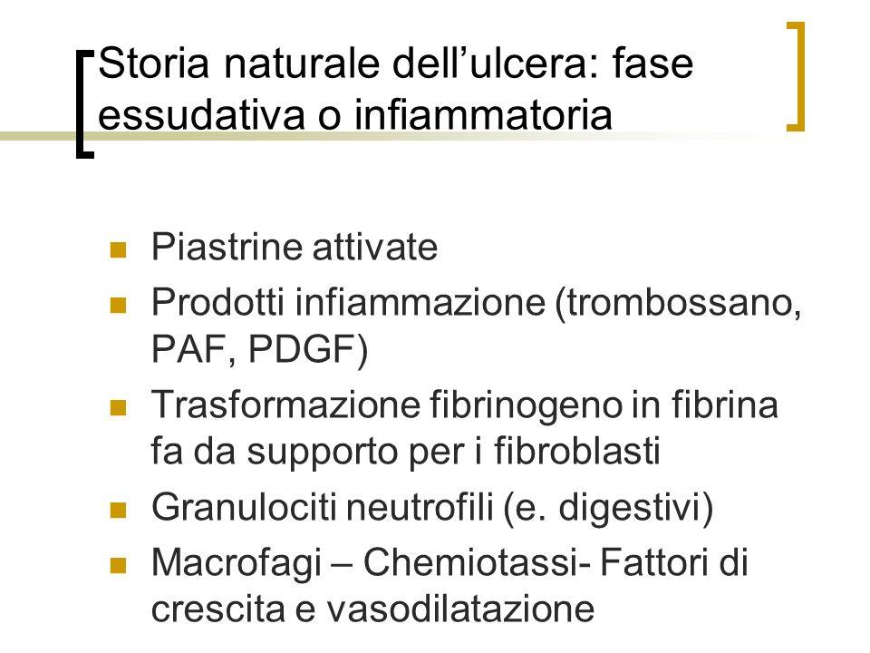 Storia naturale dell'ulcera: fase essudativa o infiammatoria