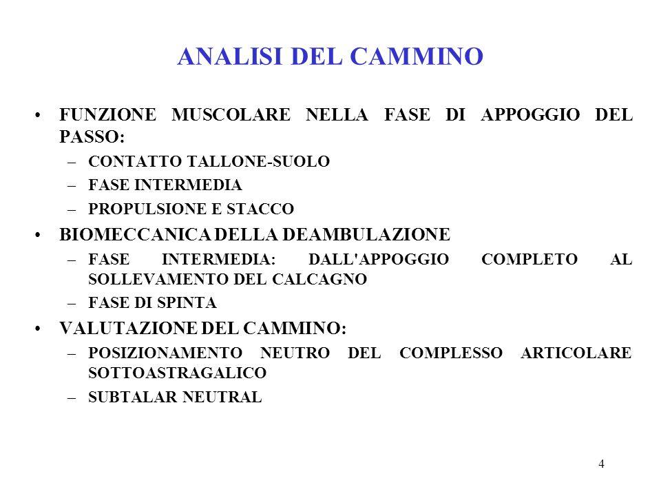 ANALISI DEL CAMMINO FUNZIONE MUSCOLARE NELLA FASE DI APPOGGIO DEL PASSO: CONTATTO TALLONE-SUOLO. FASE INTERMEDIA.