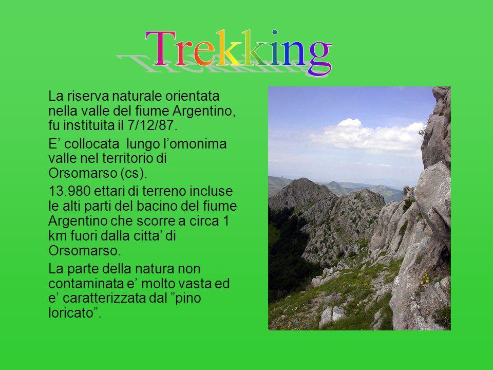 Trekking La riserva naturale orientata nella valle del fiume Argentino, fu instituita il 7/12/87.
