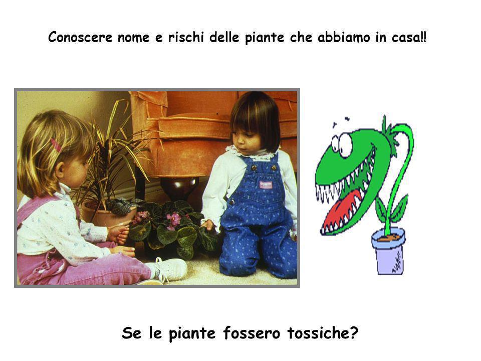 Se le piante fossero tossiche