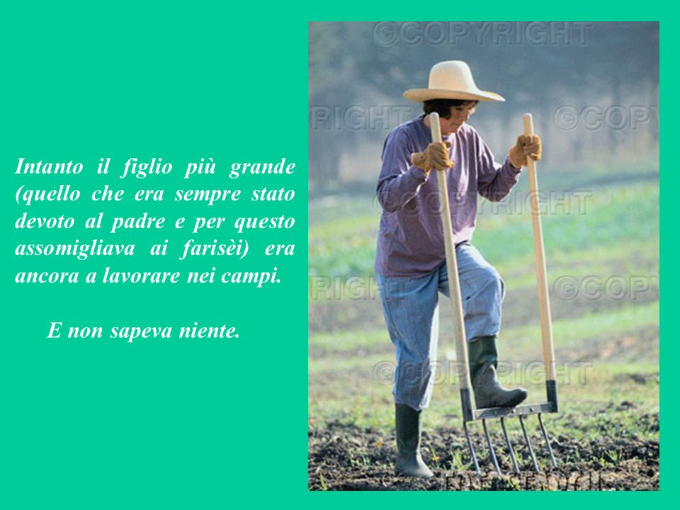 Intanto il figlio più grande (quello che era sempre stato devoto al padre e per questo assomigliava ai farisèi) era ancora a lavorare nei campi.
