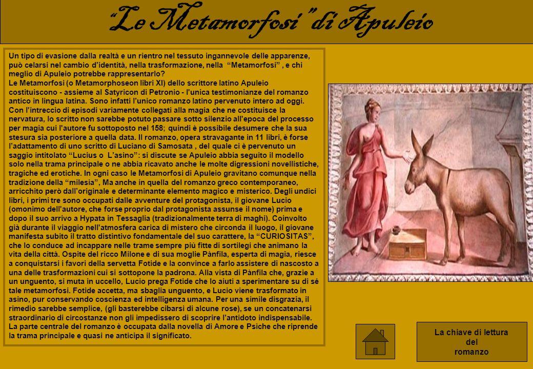 Le Metamorfosi di Apuleio