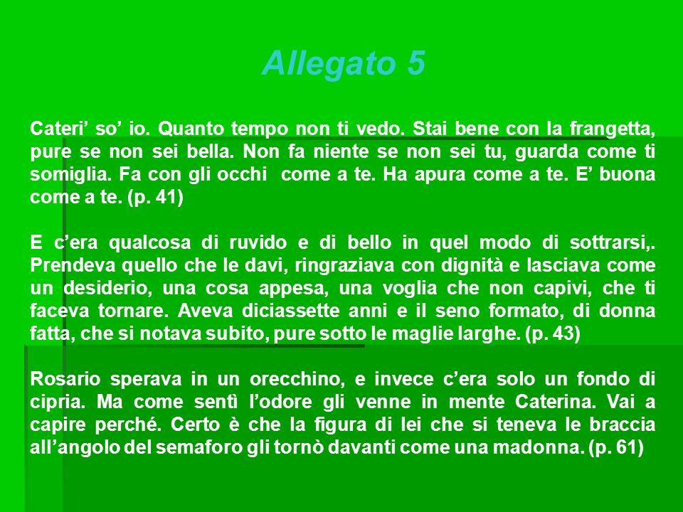 Allegato 5