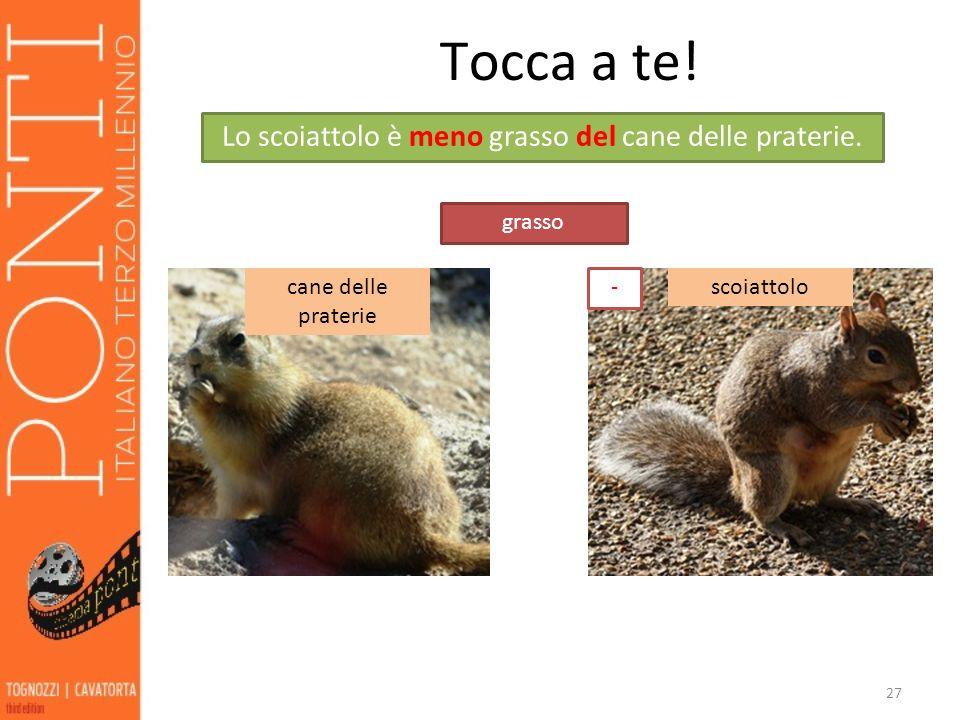 Lo scoiattolo è meno grasso del cane delle praterie.