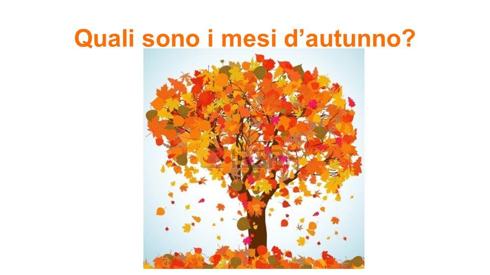 Quali sono i mesi d'autunno