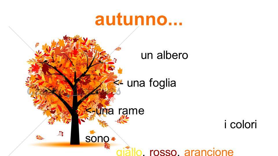 autunno... un albero <- una foglia <-una rame i colori sono