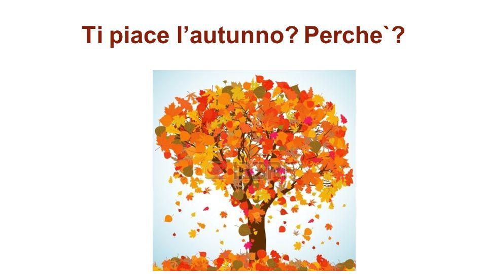 Ti piace l'autunno Perche`