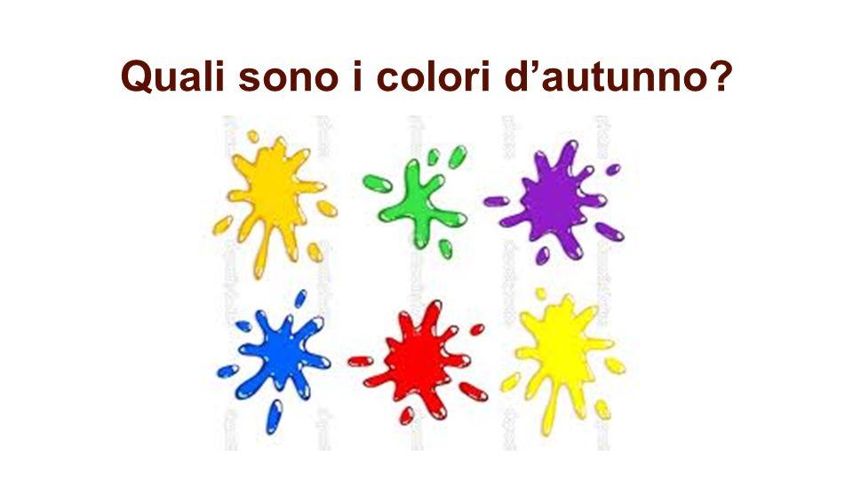 Quali sono i colori d'autunno