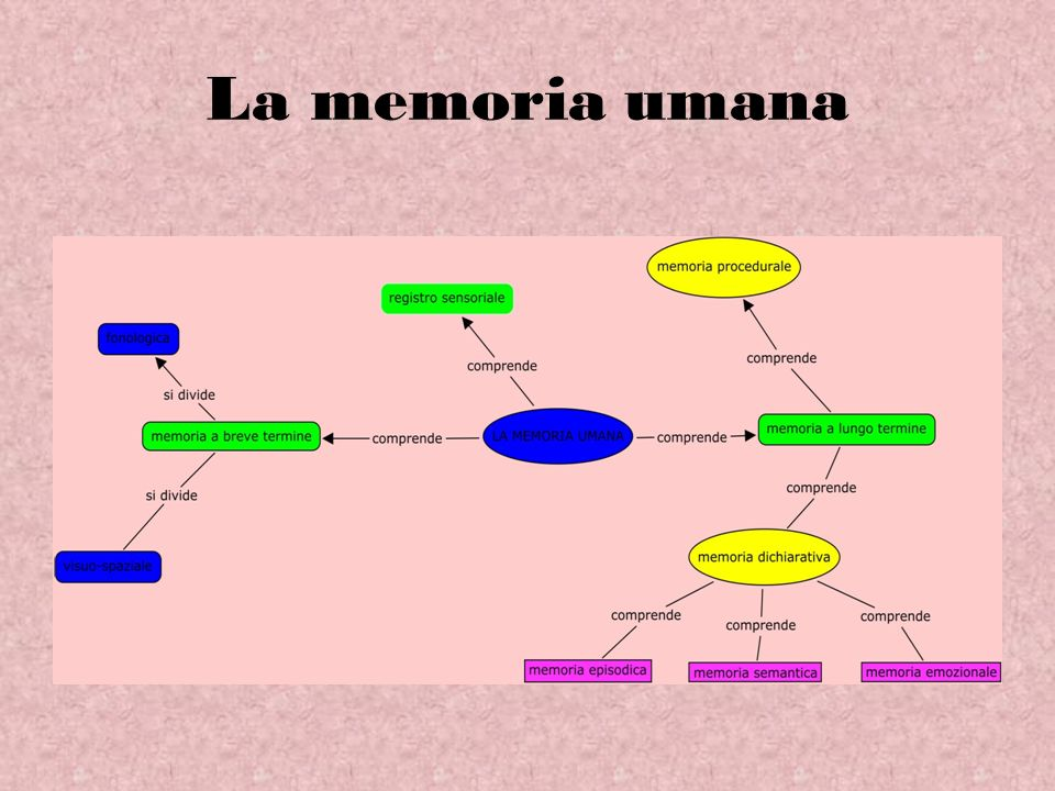 La memoria umana