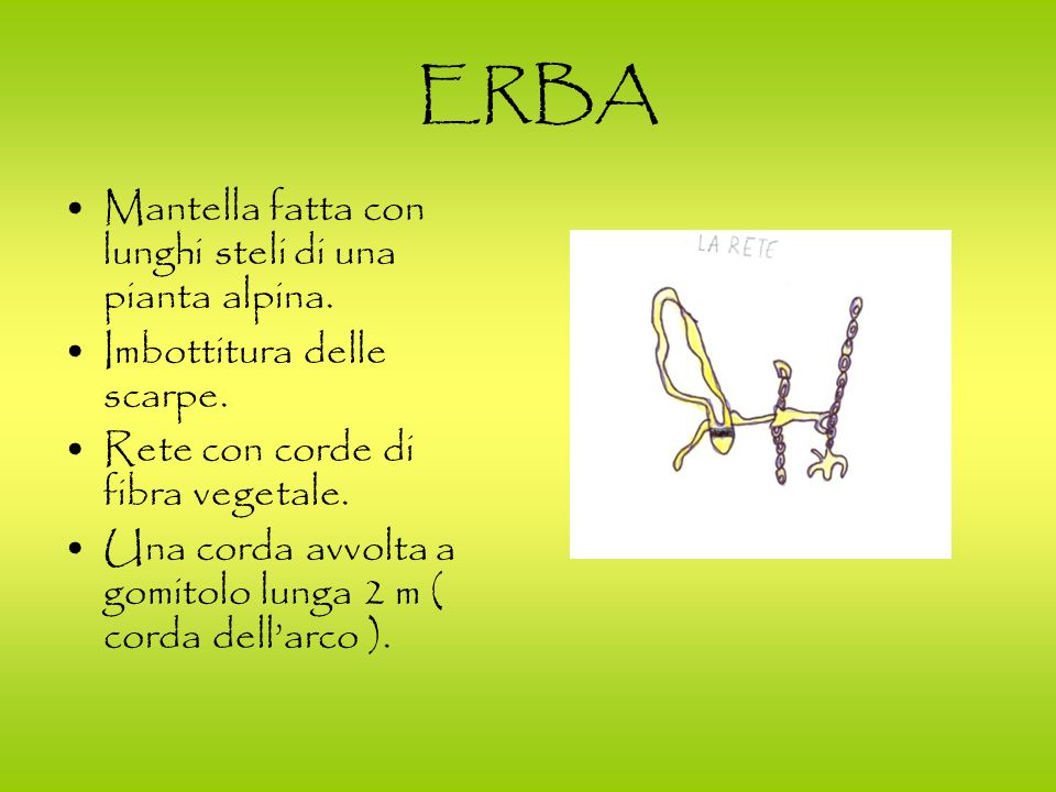 ERBA Mantella fatta con lunghi steli di una pianta alpina.