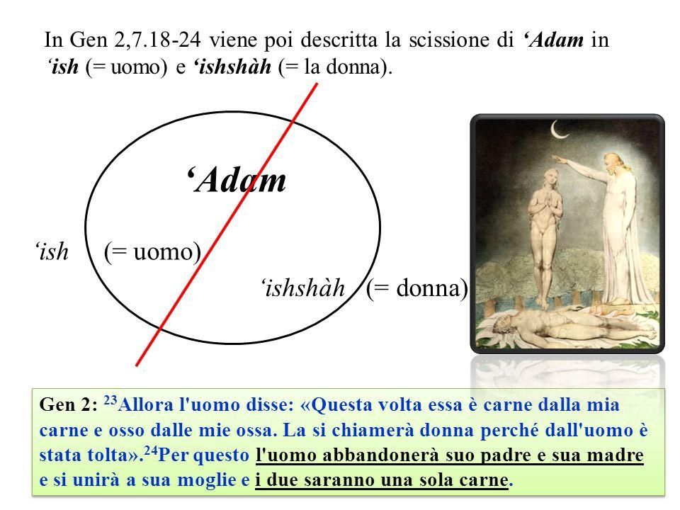 'Adam 'ish (= uomo) 'ishshàh (= donna)