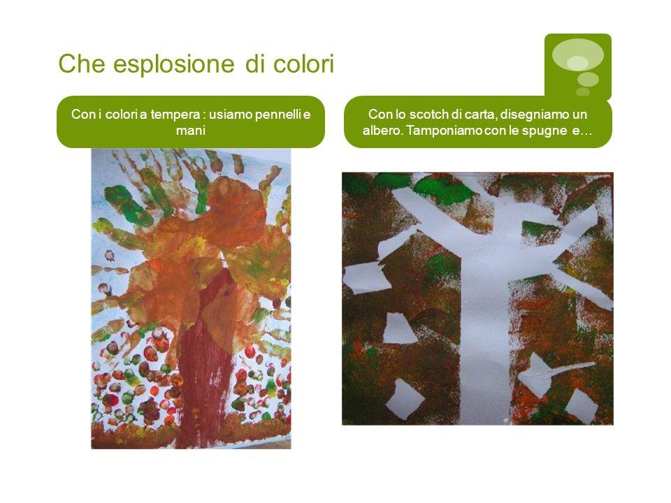 Che esplosione di colori