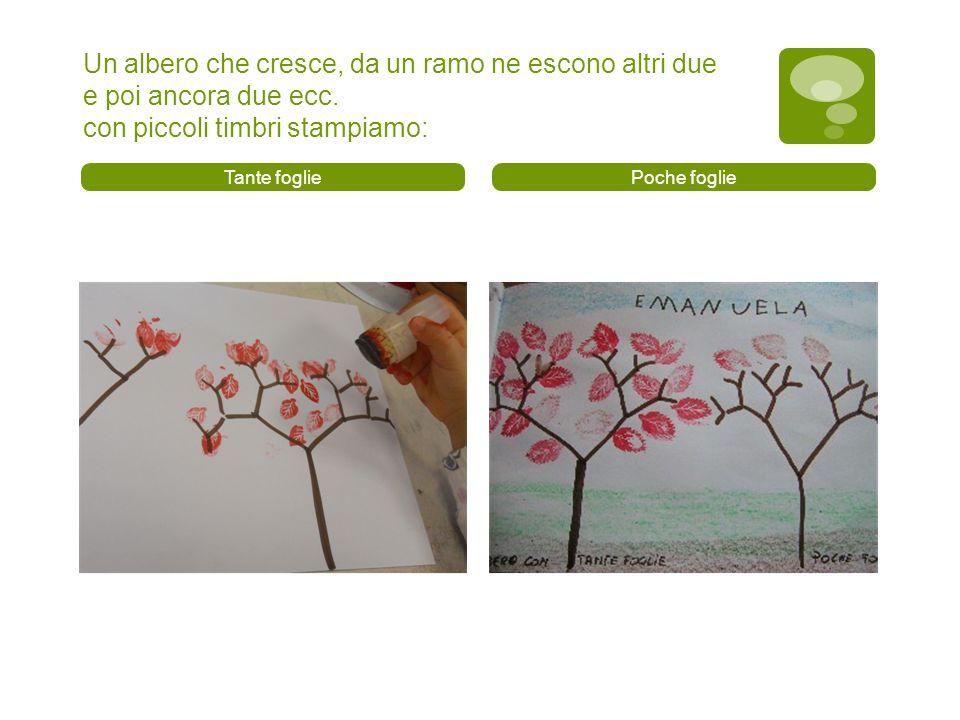 Un albero che cresce, da un ramo ne escono altri due e poi ancora due ecc. con piccoli timbri stampiamo: