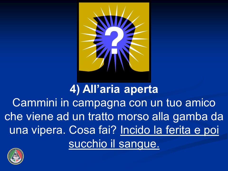 4) All'aria aperta