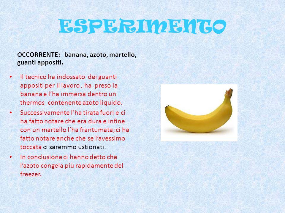 ESPERIMENTO OCCORRENTE: banana, azoto, martello, guanti appositi.