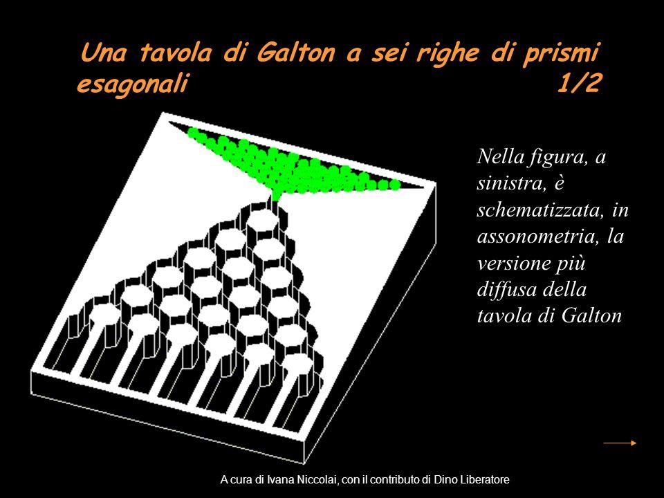 Una tavola di Galton a sei righe di prismi esagonali 1/2