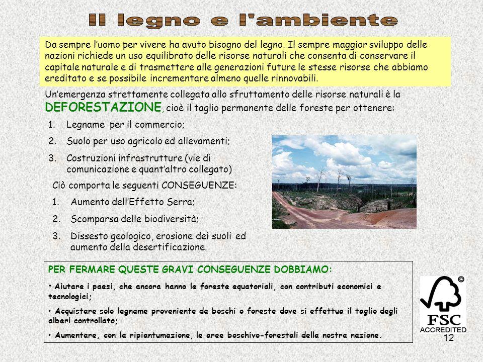 Il legno e l ambiente