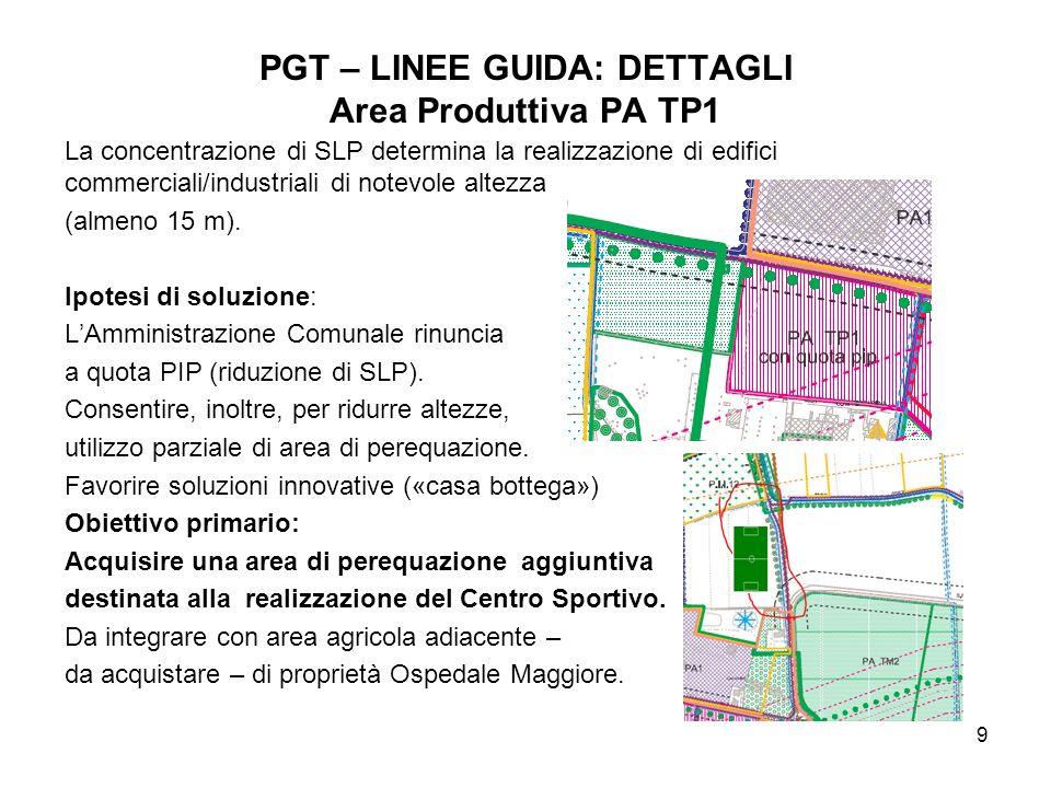 PGT – LINEE GUIDA: DETTAGLI Area Produttiva PA TP1