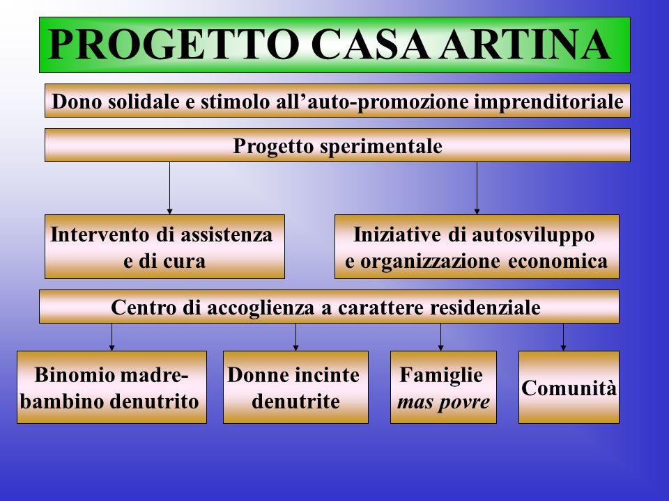 PROGETTO CASA ARTINA Dono solidale e stimolo all'auto-promozione imprenditoriale. Progetto sperimentale.