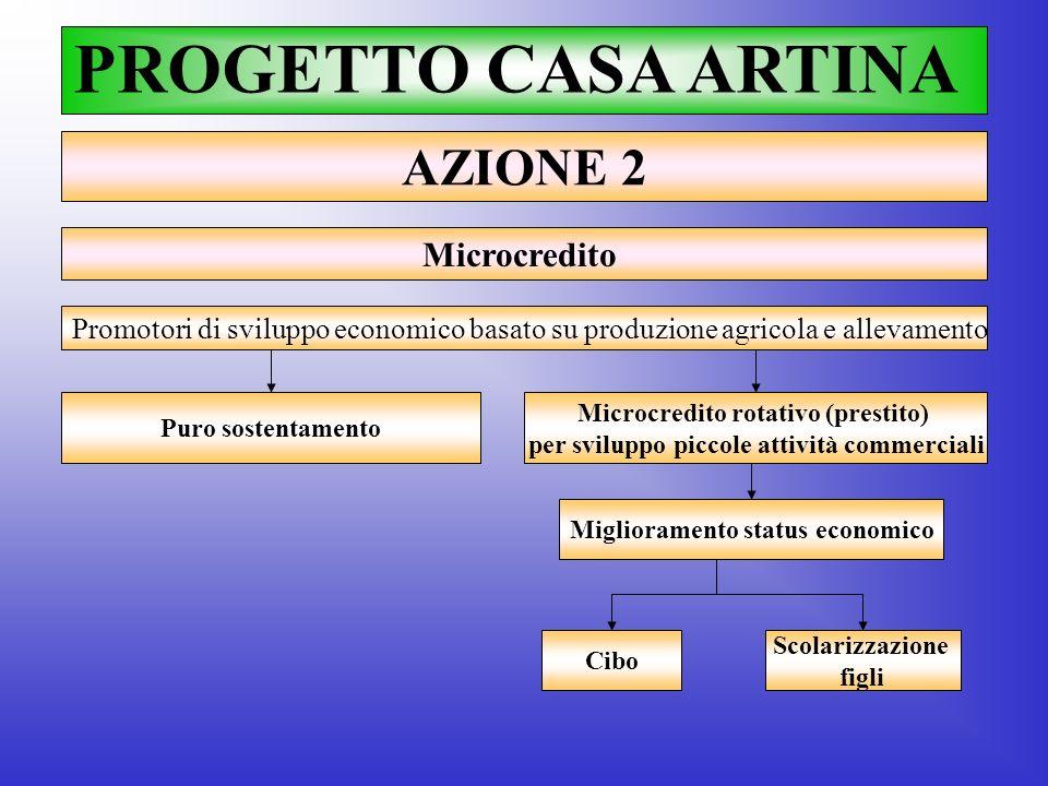 PROGETTO CASA ARTINA AZIONE 2 Microcredito