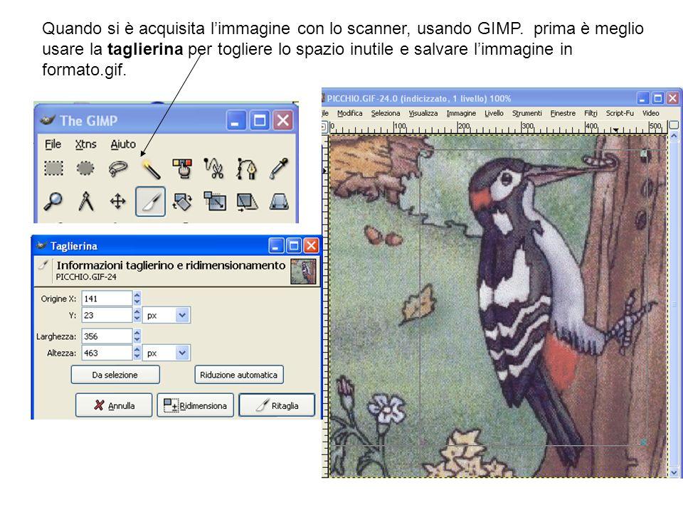 Quando si è acquisita l'immagine con lo scanner, usando GIMP