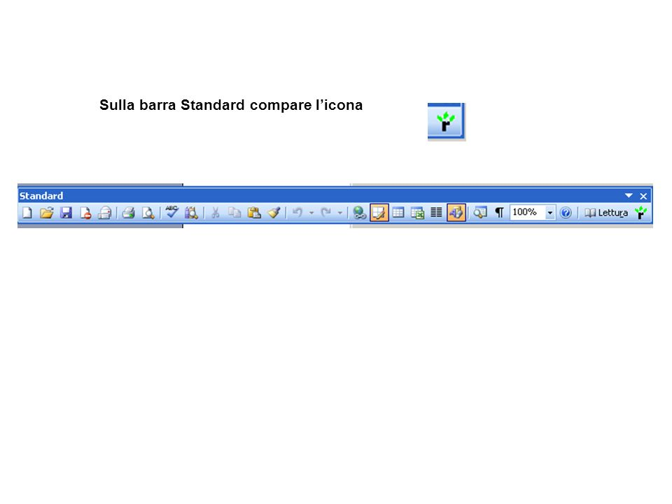 Sulla barra Standard compare l'icona