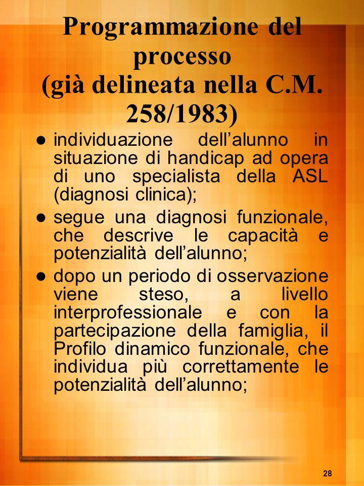 Programmazione del processo (già delineata nella C.M. 258/1983)