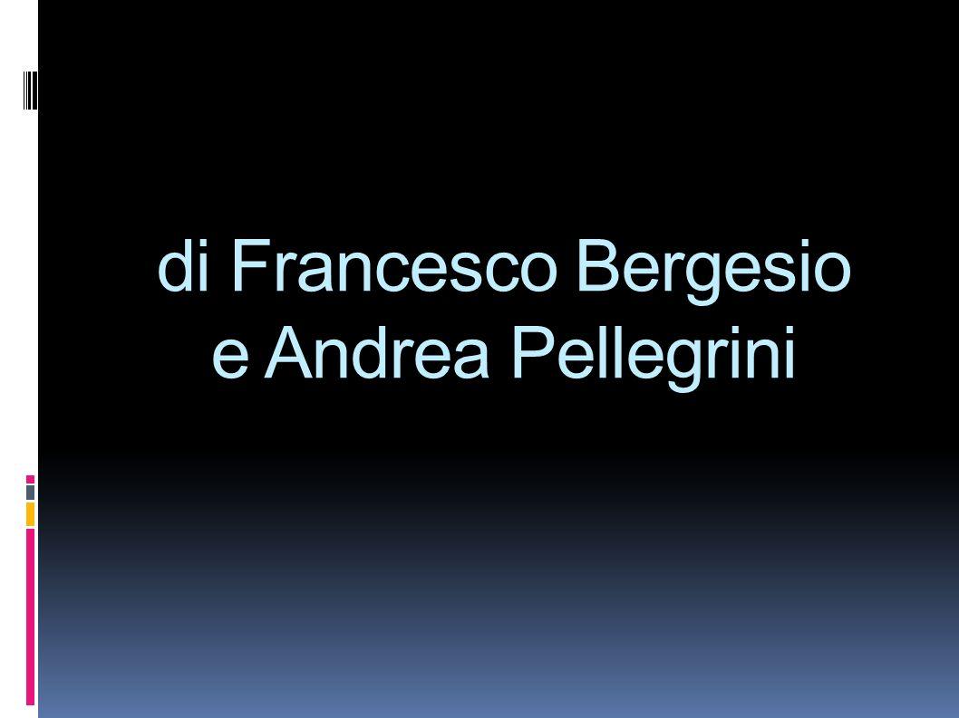 di Francesco Bergesio e Andrea Pellegrini
