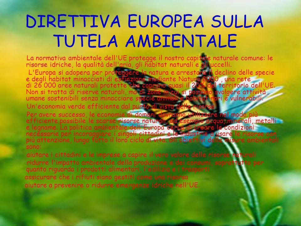 DIRETTIVA EUROPEA SULLA TUTELA AMBIENTALE
