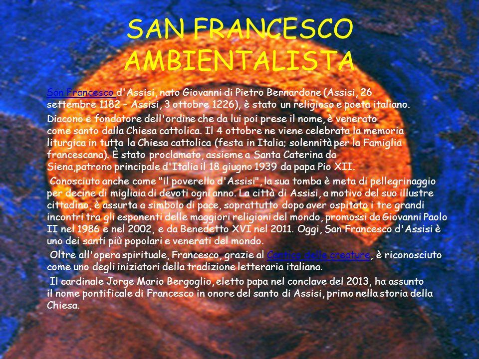SAN FRANCESCO AMBIENTALISTA