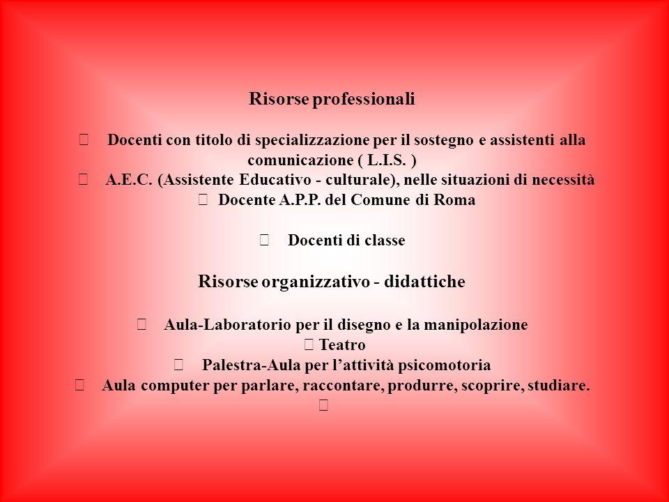 Risorse professionali Risorse organizzativo - didattiche