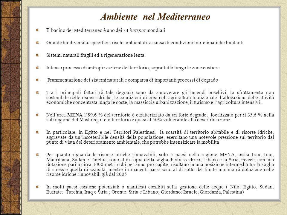 Ambiente nel Mediterraneo