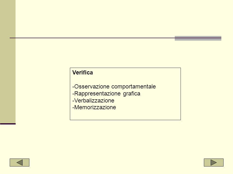 Verifica Osservazione comportamentale Rappresentazione grafica Verbalizzazione Memorizzazione
