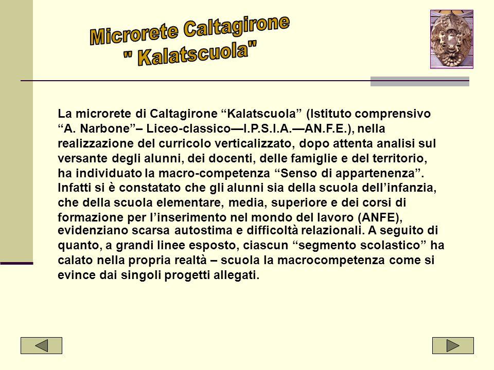 Microrete Caltagirone