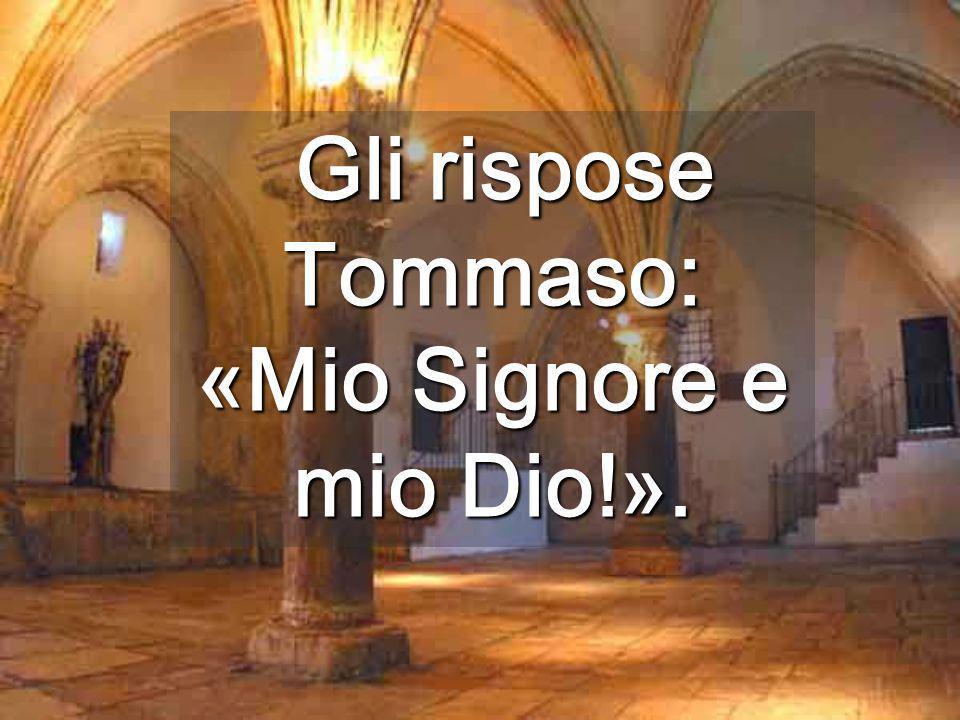 Gli rispose Tommaso: «Mio Signore e mio Dio!».