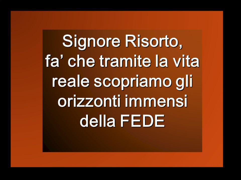 Signore Risorto, fa' che tramite la vita reale scopriamo gli orizzonti immensi della FEDE