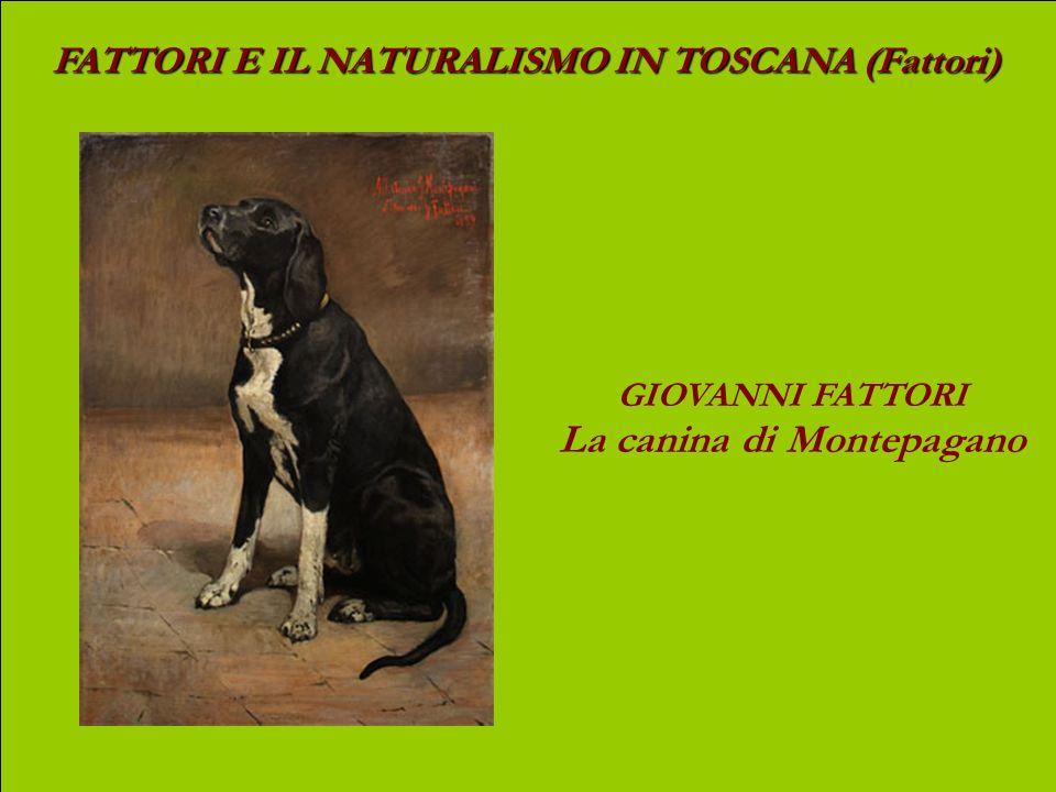 La canina di Montepagano