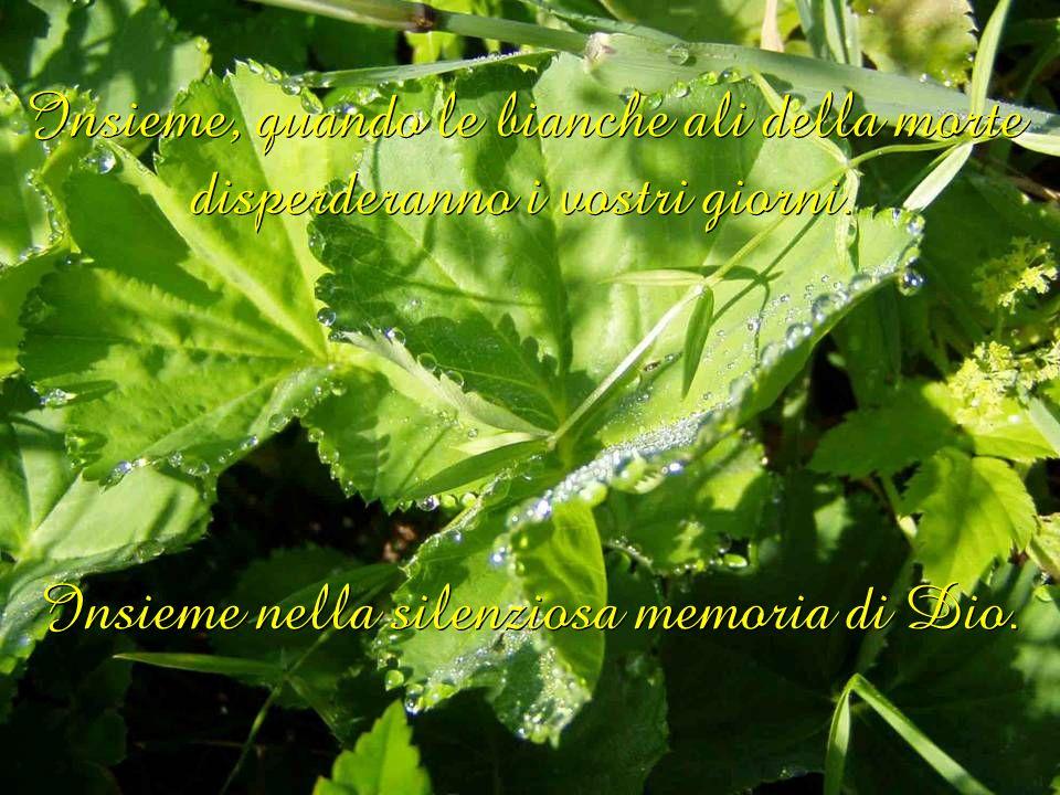 Insieme nella silenziosa memoria di Dio.