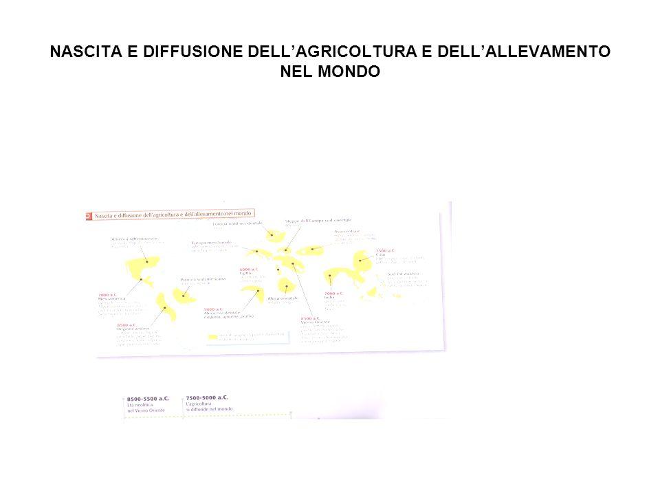 NASCITA E DIFFUSIONE DELL'AGRICOLTURA E DELL'ALLEVAMENTO NEL MONDO