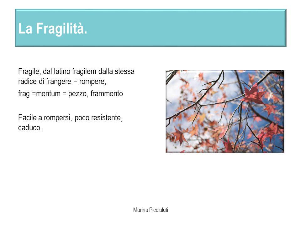 La Fragilità. Fragile, dal latino fragilem dalla stessa radice di frangere = rompere, frag =mentum = pezzo, frammento.