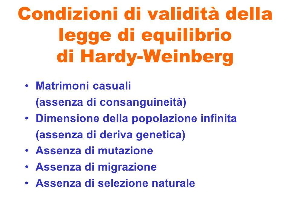 Condizioni di validità della legge di equilibrio di Hardy-Weinberg