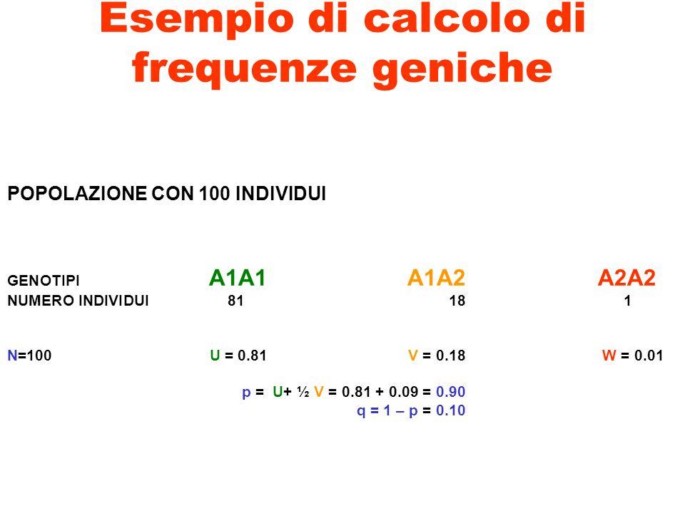 Esempio di calcolo di frequenze geniche