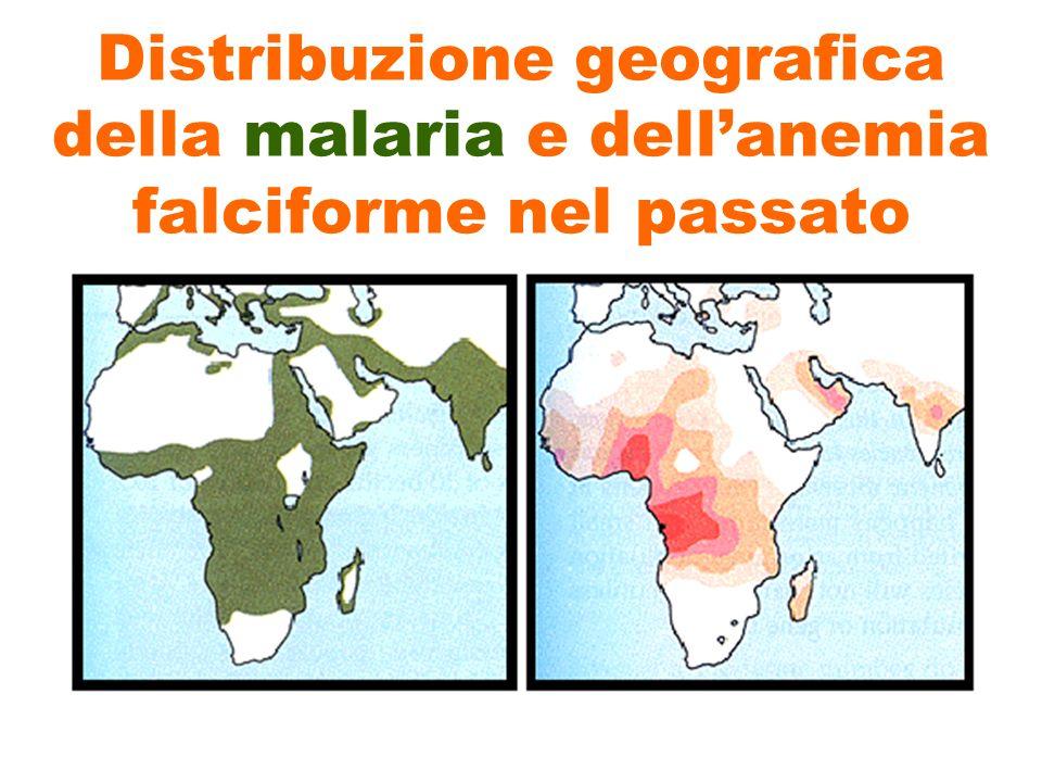 Distribuzione geografica della malaria e dell'anemia falciforme nel passato